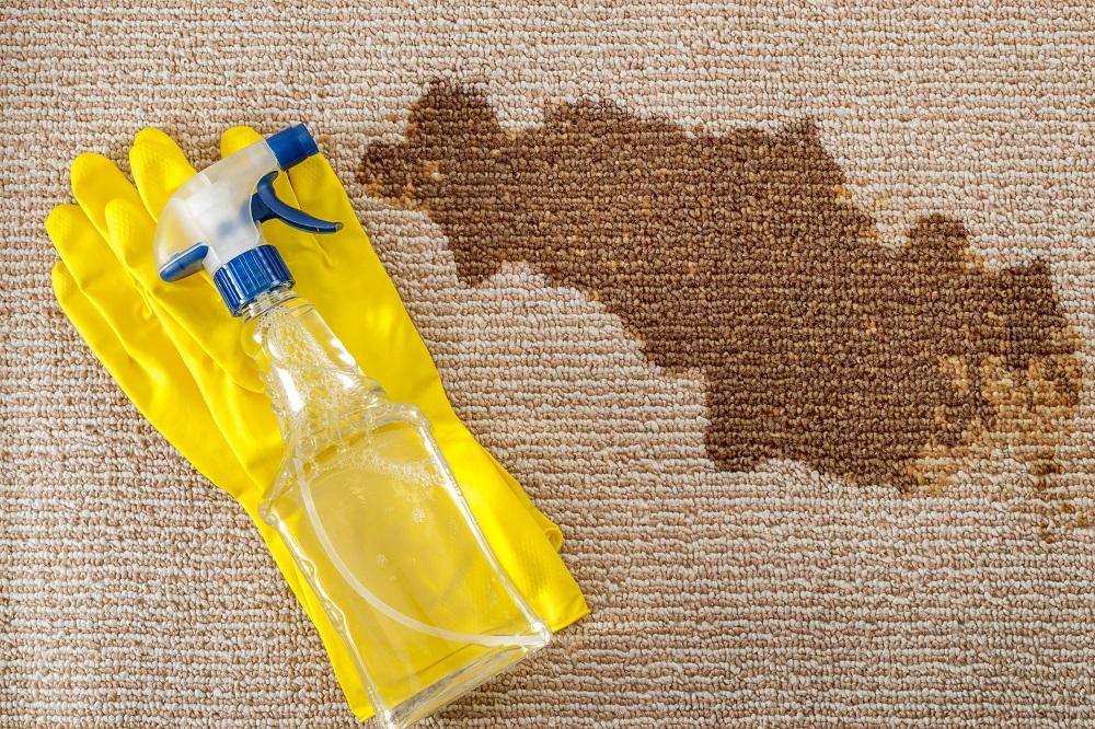 اسپری لکه بر فرش, لکه بر فرش فرش سجاده محراب نقش کاشان