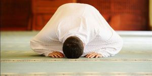سجاده فرش کاشان - فرش مسجد کاشان - فرش سجاده ای کاشان